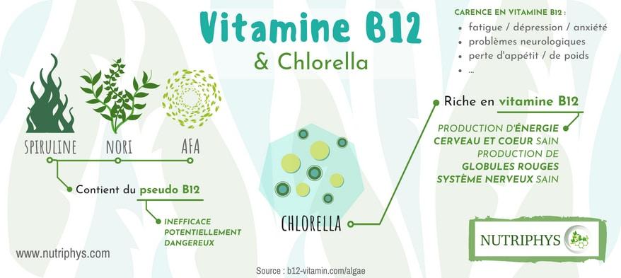 Vitamine B12 - chlorella vs spiruline